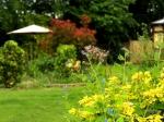 Westlands Garden